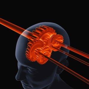 3952369-brain-gear